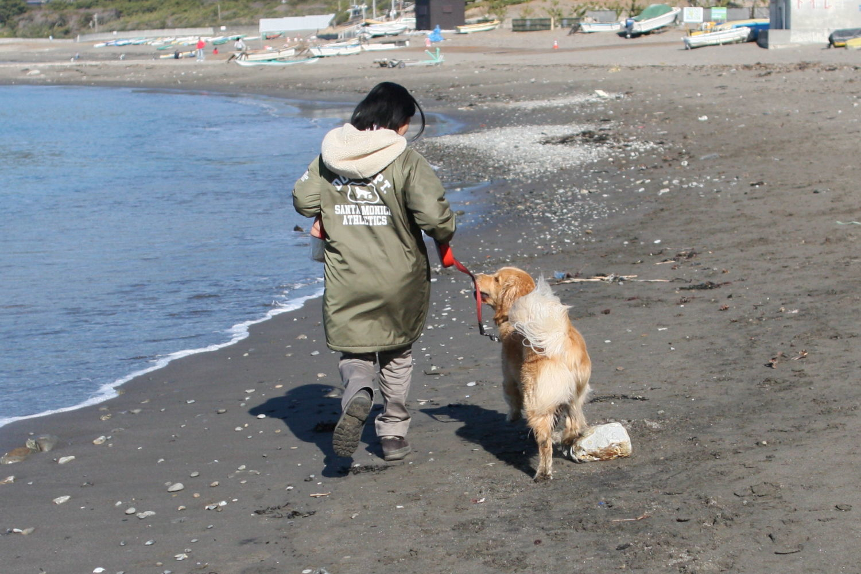 冬の葉山の海♪_b0275998_12392082.jpg