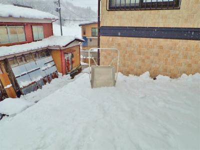 兼業農家の雪降ろしは3回目になりました_c0336902_17453849.jpg