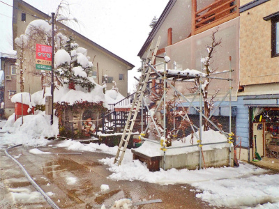 兼業農家の雪降ろしは3回目になりました_c0336902_17454794.jpg