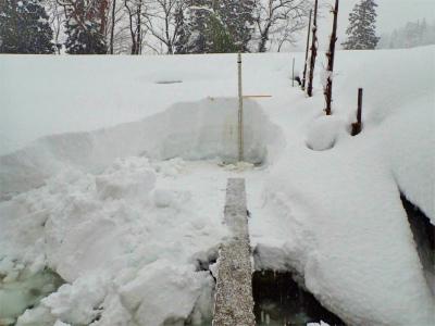 暖冬の積雪深を測ってみました_c0336902_18133032.jpg