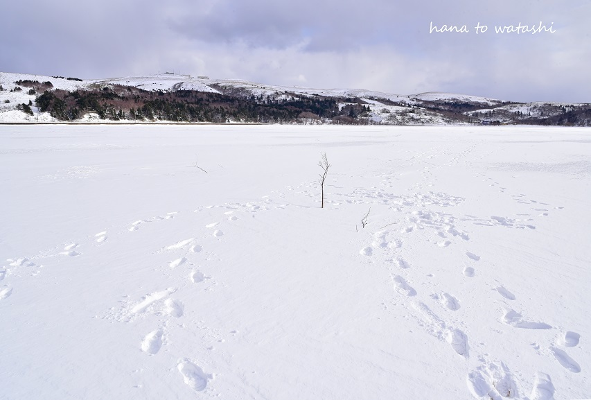 久種湖の上でアイスクリームづくり。_e0120026_08514145.jpg