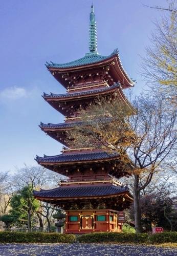 上野寛永寺の五重塔_a0277742_20110746.jpg