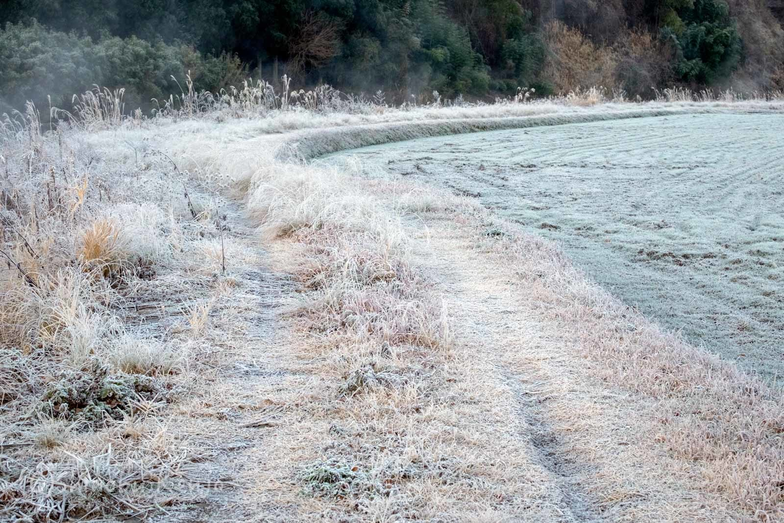 寒い週明け_a0323543_23190162.jpg