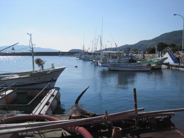 天草大多尾漁港へアラカブ釣りに行く _a0278866_11524023.jpg