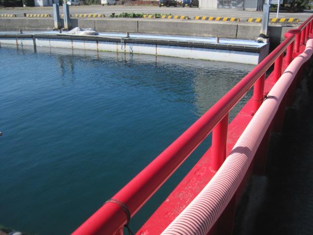 天草大多尾漁港へアラカブ釣りに行く _a0278866_115352.jpg