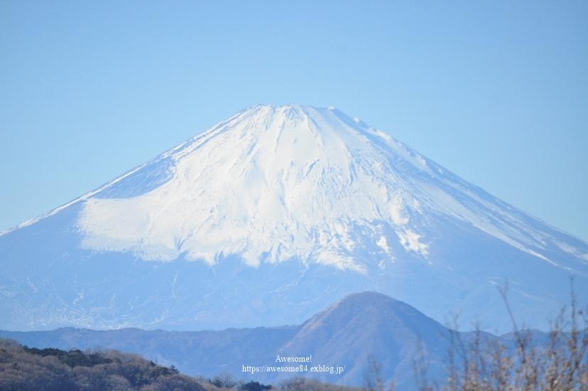 海と菜の花と富士山と。_e0359481_08483150.jpg