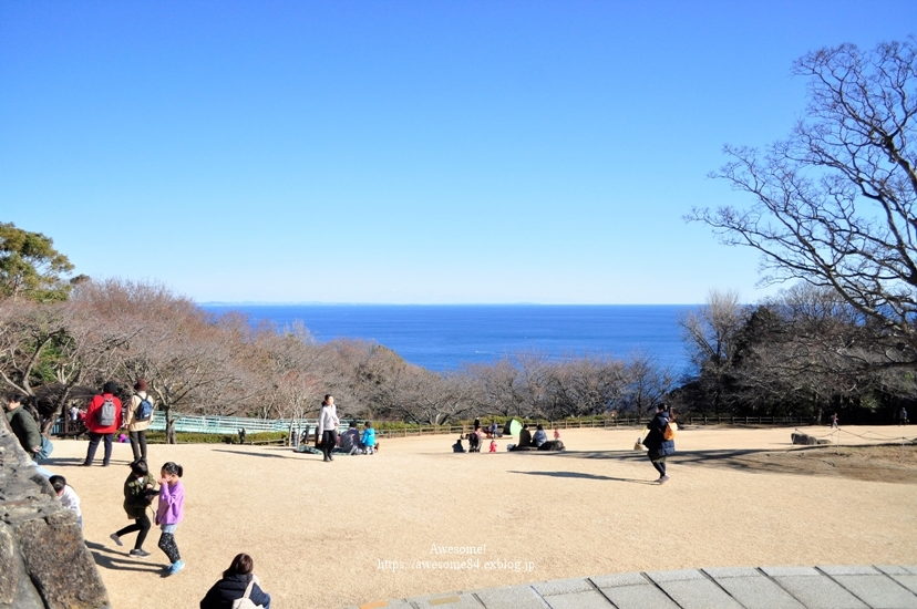 海と菜の花と富士山と。_e0359481_08572045.jpg