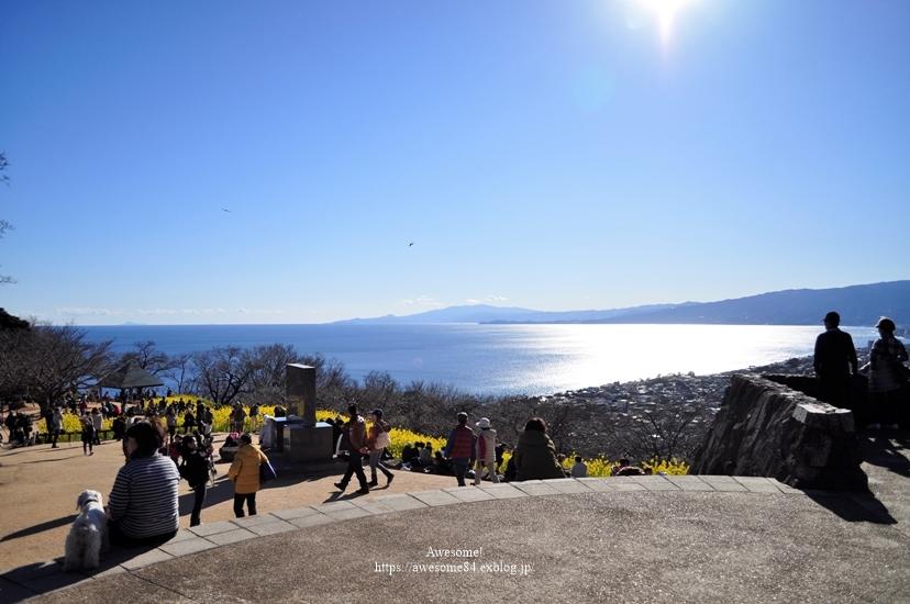 吾妻山公園 -vol.2-_e0359481_08572528.jpg