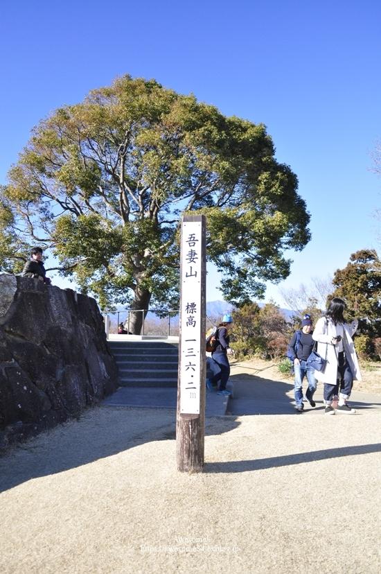 吾妻山公園 -vol.2-_e0359481_08573043.jpg