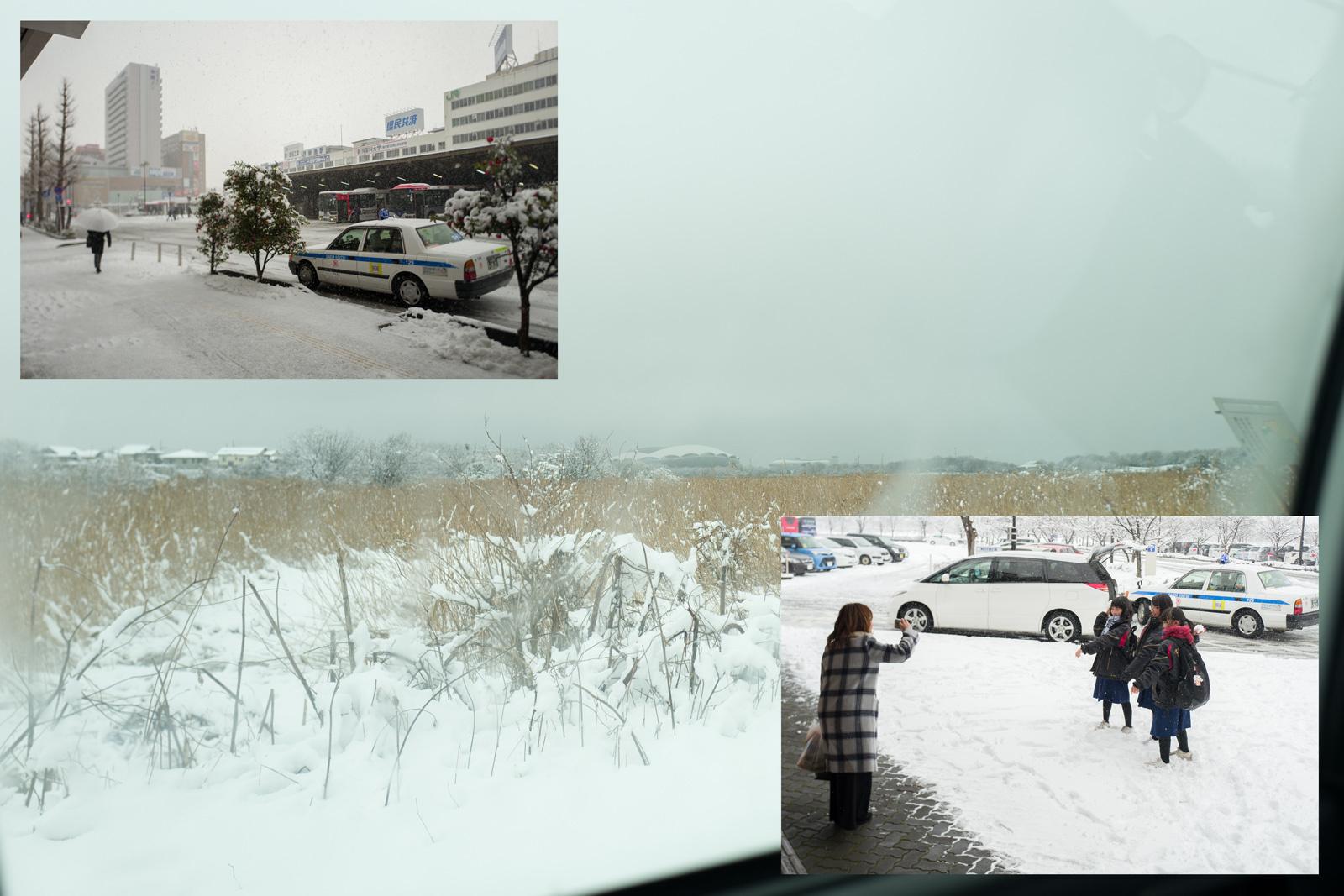 雪の新潟_a0271402_08211912.jpg
