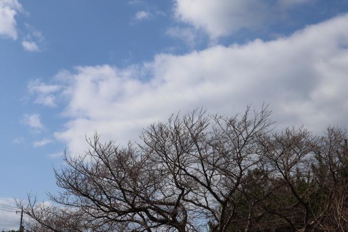 冬です!  かわいい_b0239402_16265688.jpg
