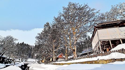 昨日も「雪の花」がきれいでした_c0336902_18101417.jpg
