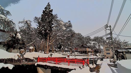 昨日も「雪の花」がきれいでした_c0336902_18101740.jpg
