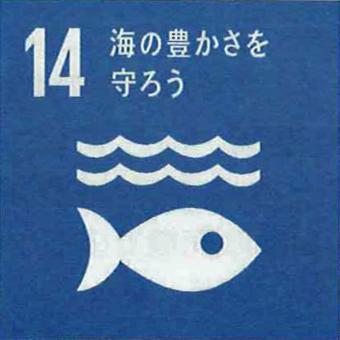 SDGsのバッジをもらいました。_c0195909_11453329.jpg