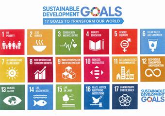 SDGsのバッジをもらいました。_c0195909_11463642.jpg