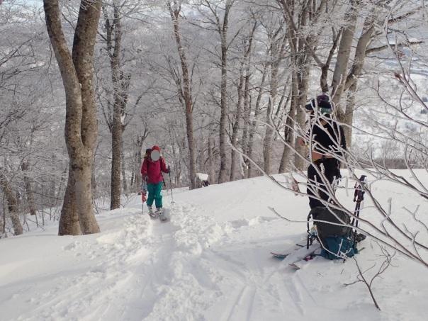 山スキーシーズン開幕_b0133032_23373891.jpg