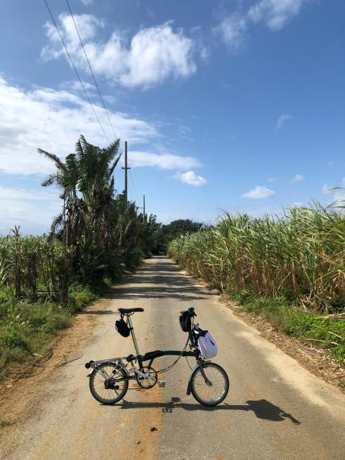自転車で美島めぐりin宮古島2019に参加_d0197762_11333570.jpg