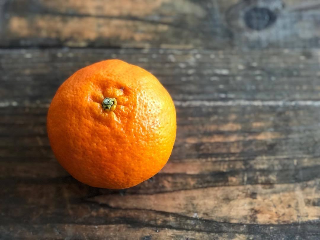 My favorite Japanese citrus_b0117564_19482106.jpg