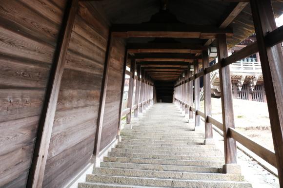 (番外編)東大寺に行ってちゃんとした写真を撮ろうとした記事_c0001670_19475768.jpg