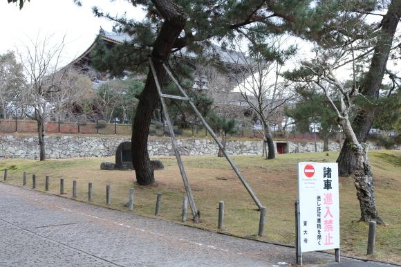 (番外編)東大寺に行ってちゃんとした写真を撮ろうとした記事_c0001670_19491832.jpg