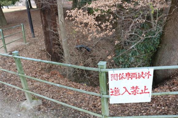 (番外編)東大寺に行ってちゃんとした写真を撮ろうとした記事_c0001670_19493237.jpg