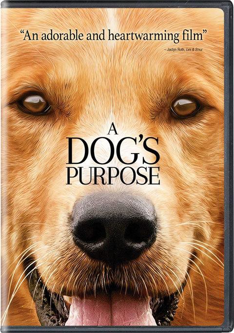 A Dog\'s Purpose / 僕のワンダフルライフ_a0342172_13485442.jpg