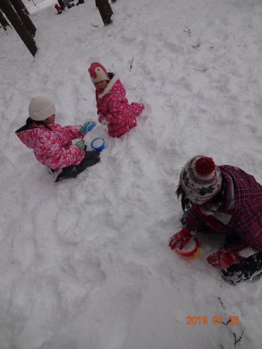 1月26日雪国体験ツアー_b0114789_20222216.jpg