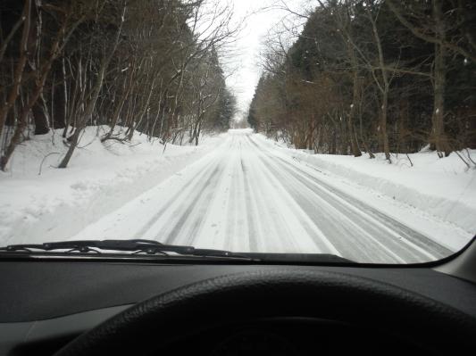 雪行ってきました!_c0132901_20410520.jpg