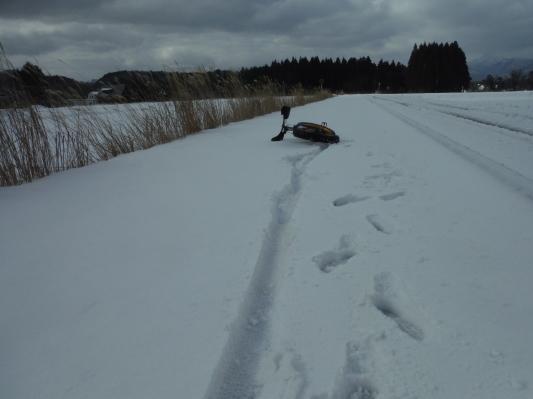 雪行ってきました!_c0132901_20481716.jpg