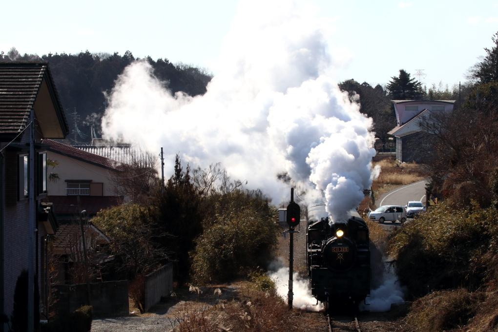 白煙はいっぱい、でも黒煙は無い - 2019年冬・真岡鐵道 -_b0190710_22590751.jpg