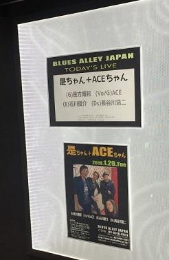 是ちゃん+ACEちゃんライブ(2019年1月目黒)_b0114515_23194166.jpg