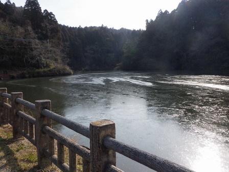 1月ももうすぐ終わり。寒い。猛禽。_a0123836_16545649.jpg