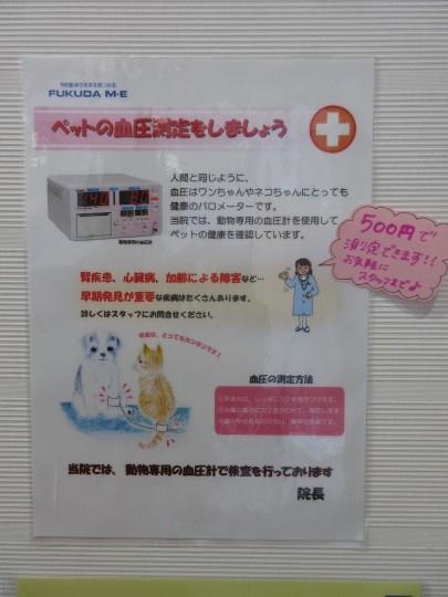 血圧測定はじめました_e0339146_16282847.jpg