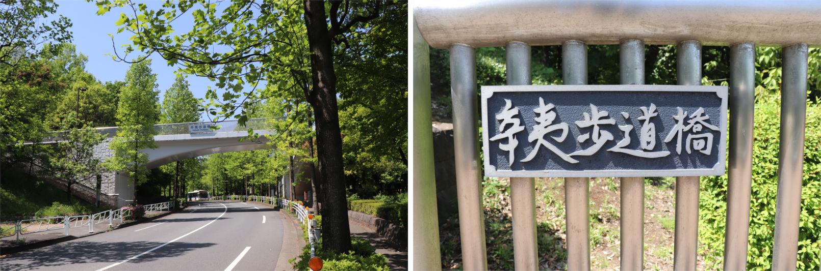 [多摩NTの橋ぜんぶ撮影PJ] No.36~40 上柚木公園周辺の橋_a0332275_00332992.jpg