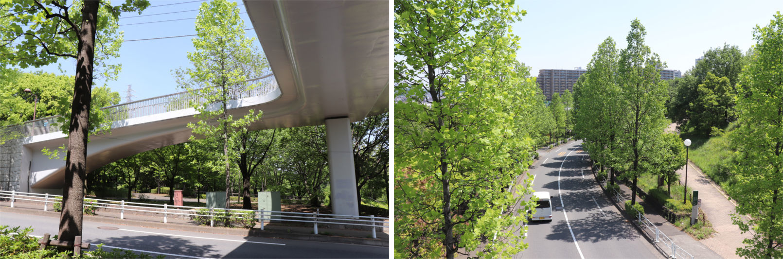[多摩NTの橋ぜんぶ撮影PJ] No.36~40 上柚木公園周辺の橋_a0332275_00424195.jpg