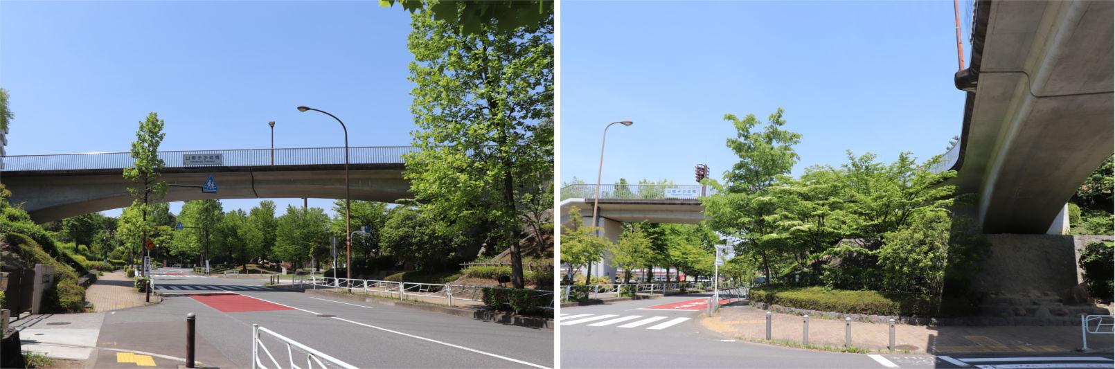 [多摩NTの橋ぜんぶ撮影PJ] No.36~40 上柚木公園周辺の橋_a0332275_00480000.jpg