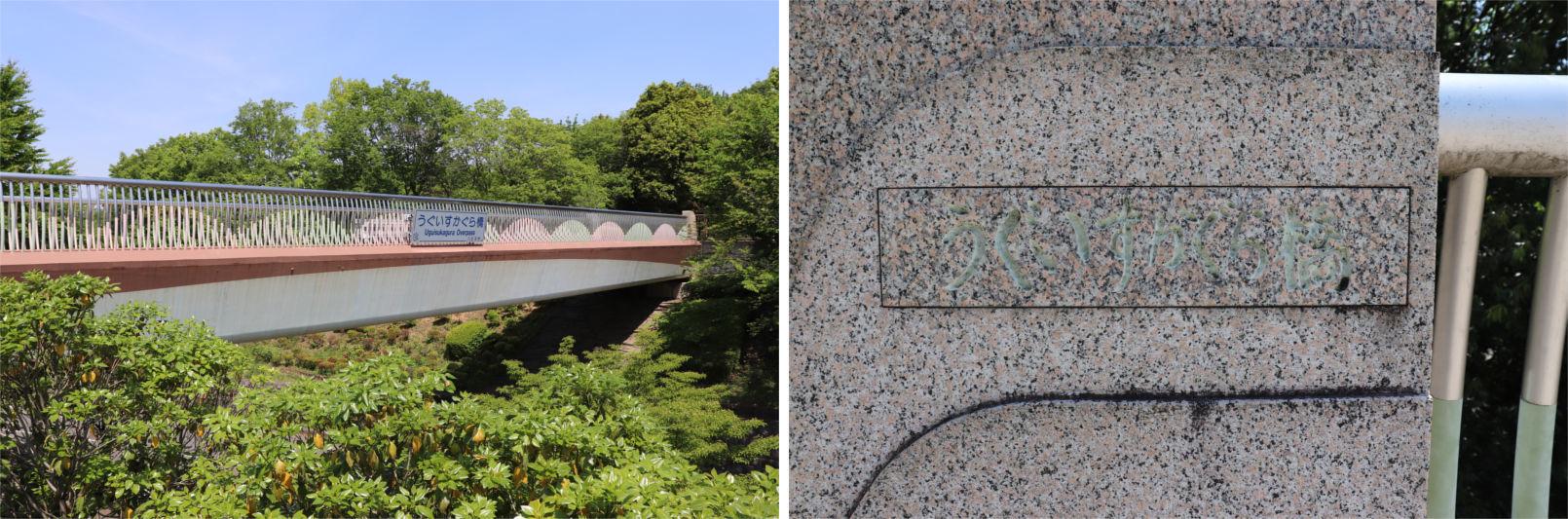 [多摩NTの橋ぜんぶ撮影PJ] No.36~40 上柚木公園周辺の橋_a0332275_01103075.jpg