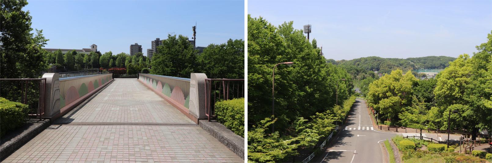 [多摩NTの橋ぜんぶ撮影PJ] No.36~40 上柚木公園周辺の橋_a0332275_01150971.jpg