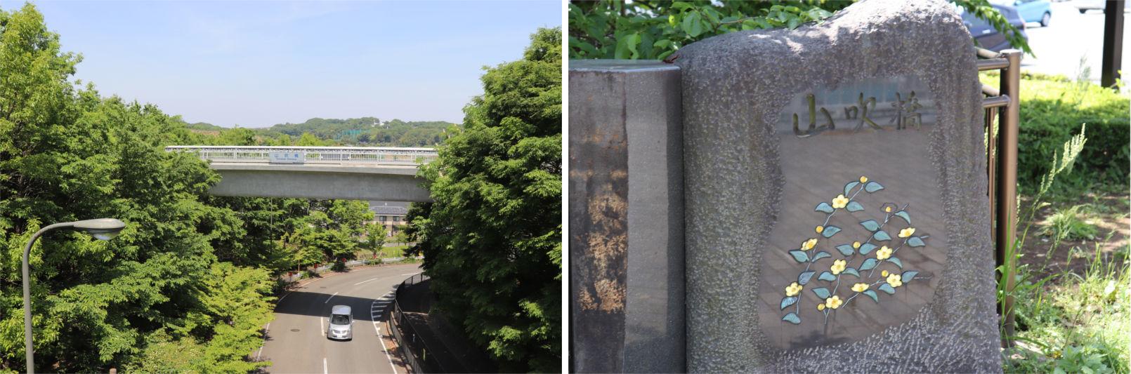 [多摩NTの橋ぜんぶ撮影PJ] No.36~40 上柚木公園周辺の橋_a0332275_01243606.jpg