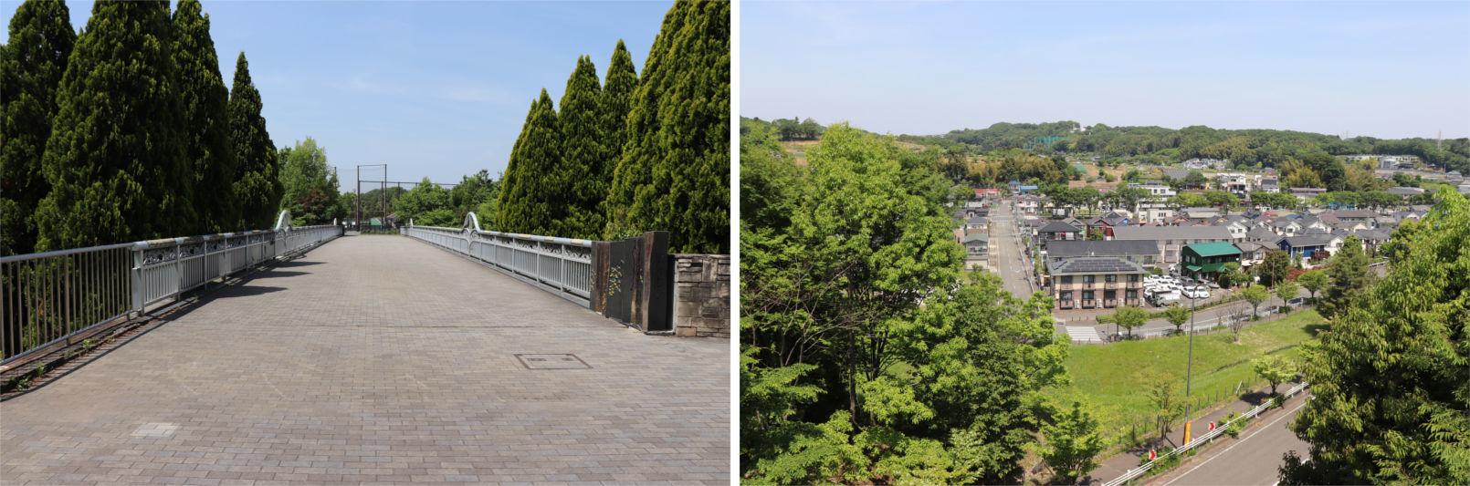 [多摩NTの橋ぜんぶ撮影PJ] No.36~40 上柚木公園周辺の橋_a0332275_01290198.jpg