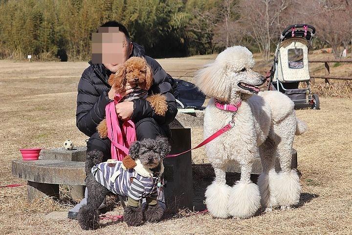 桃太郎公園キャンプ場。_b0111376_14381174.jpg
