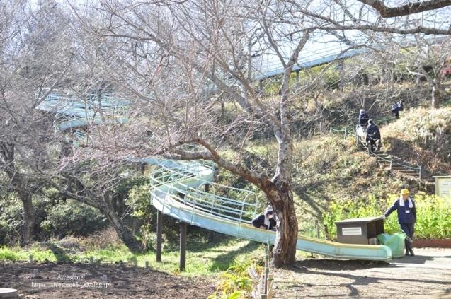 吾妻山公園 -vol.2-_e0359481_22103787.jpg