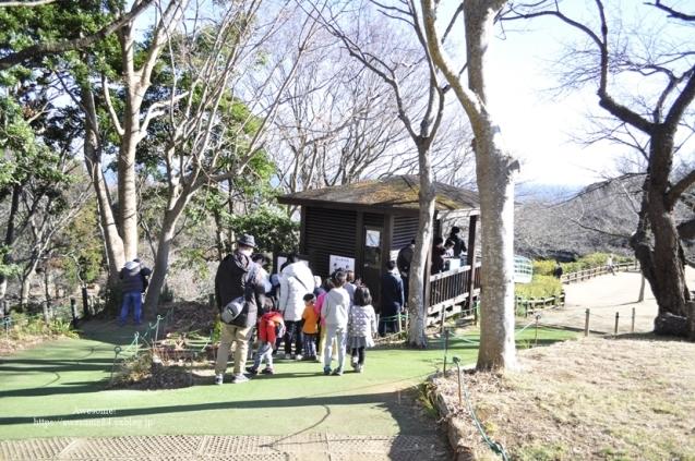 吾妻山公園 -vol.2-_e0359481_22104938.jpg