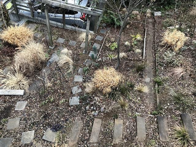 雪になるかも…1月31日の庭。_c0124100_18000911.jpg