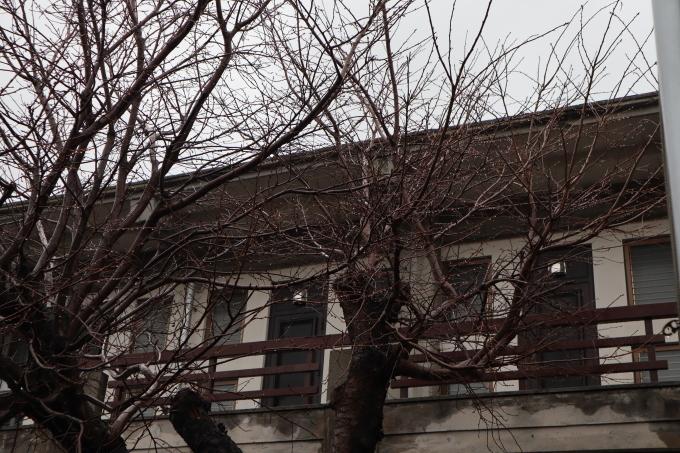 冬です!  18歳 青春_b0239402_15525442.jpg