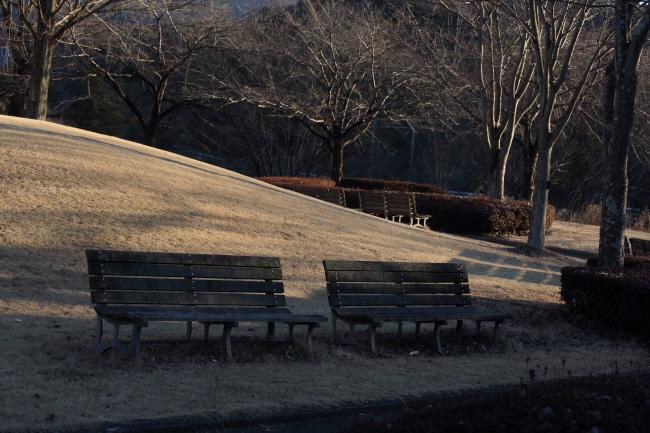冬日のベンチ _a0357206_21403164.jpg