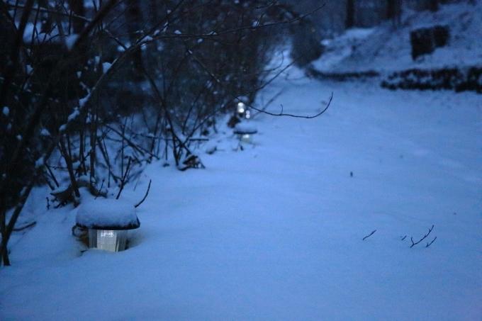 夕方から雪_f0091207_18242260.jpg