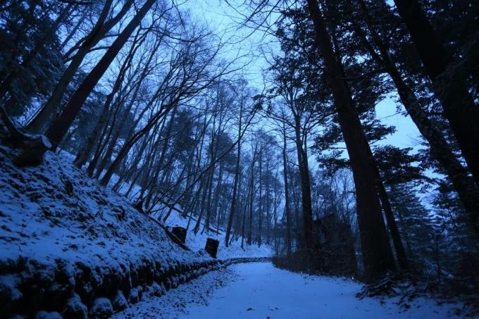 夕方から雪_f0091207_18242336.jpg