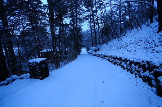 夕方から雪_f0091207_18242382.jpg
