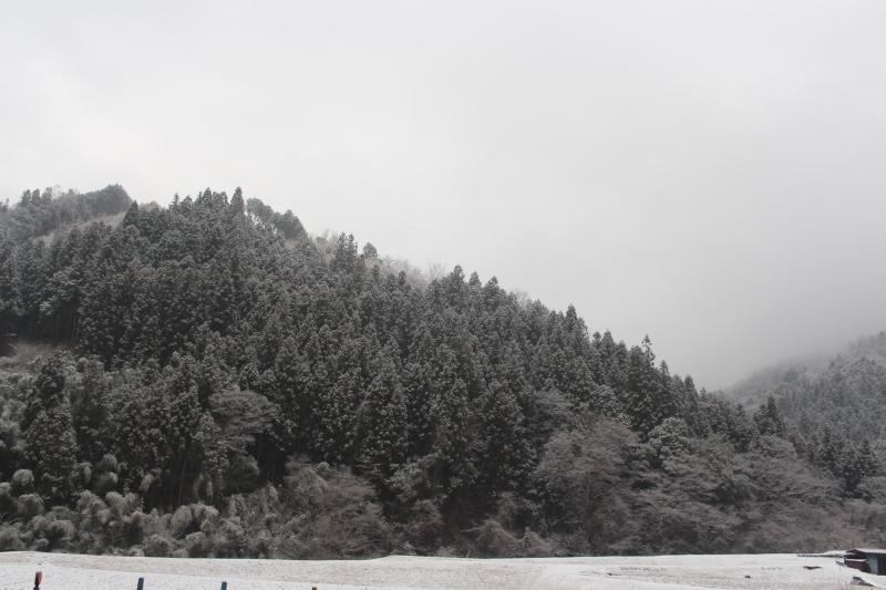 寒いけど、やっぱり楽しい時間_b0220318_11410989.jpg